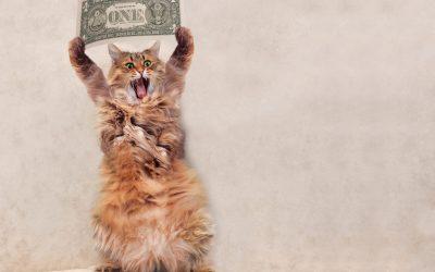 Managing Financial Stress. A Free Webinar:  June 4th 11:30-12:30 (CET)