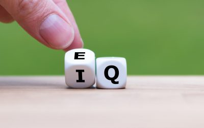 New Weekly Online Men's Group: EQ/IQ